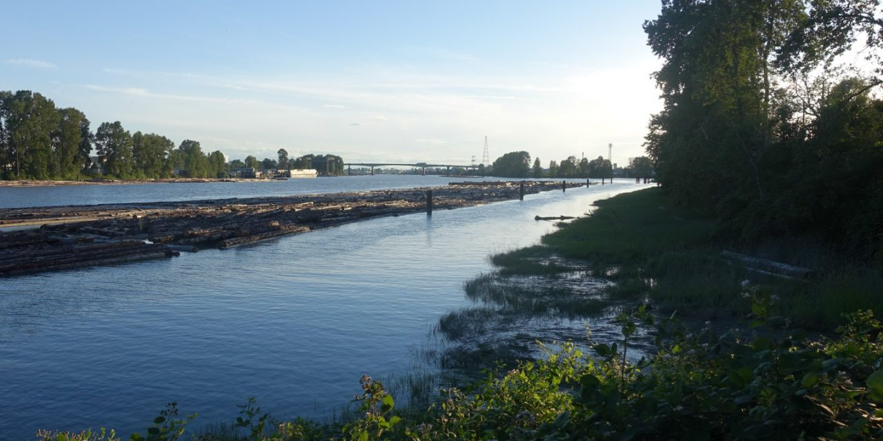 Fraser River Walk: An evening soundwalk along our southern river