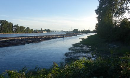 Fraser River Walk: An evening soundwalk along our southern river