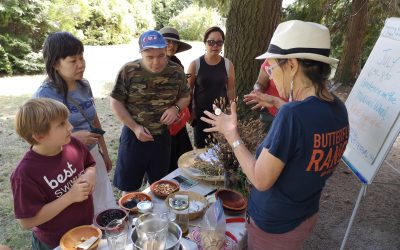 Medicinal Gardening with Lori Snyder