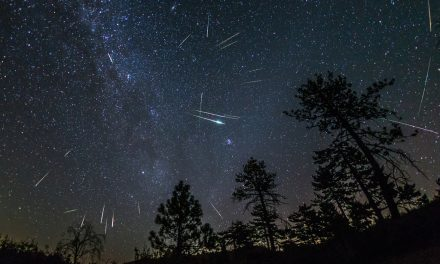 Perseids Meteor Shower